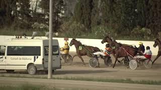 Vidéo de la course PMU PREMI MOIX D'ARC