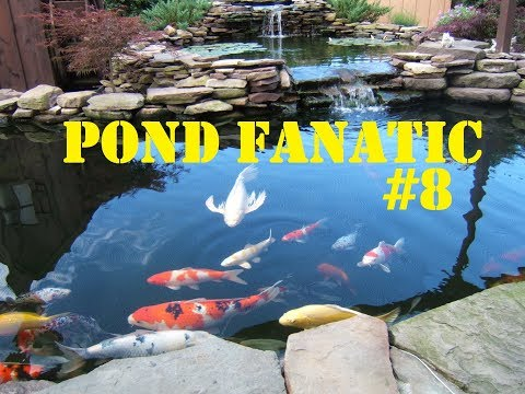 PONDFanatic#8: 08/09/17 - Floating Algae HELP!