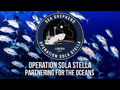 Partnering for the Oceans