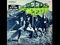 THE SEEDS -  Nobody Spoil My Fun