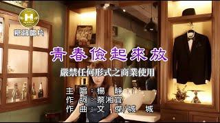 楊靜-青春儉起來放【KTV導唱字幕】1080p