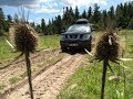Nissan Pathfinder Mud Off Road with Falken Wildpeak AT Tire with 4wd Low