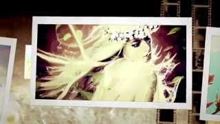 видео AKVIS ArtWork