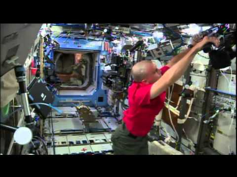 Expedition 41 B Roll Feed of Flight Engineer Reid Wiseman