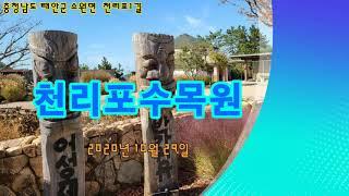 [free down ]천리포수목원 (2)  2020년 …