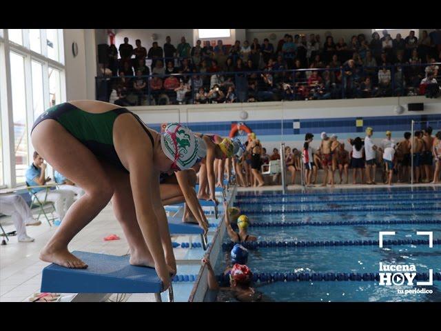 VÍDEO: Casi 250 nadadores participaron en Lucena en el Campeonato de Andalucía de Natación