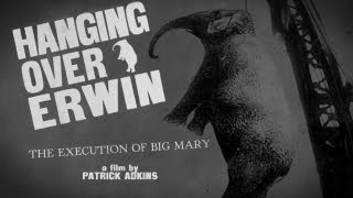 Hanging Over Erwin: The Execution of Big Mary