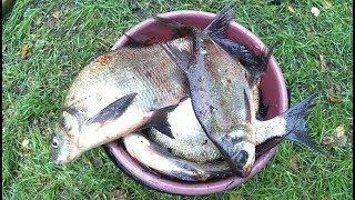 Рыбалка на донки,оснастка донок,ловим леща,бешеный клёв,рыбалка в дождь,на природу с семьёй,
