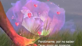 Perdóname ( Nana Mouskouri)-01-28-10-39_avi.avi
