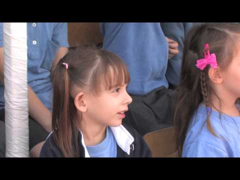 American Academy Group Of Schools Limassol And Paphos