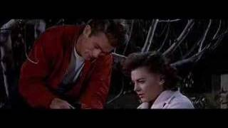 "Rebel without a Cause ""Live it Up"""