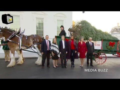 Melania Trump Receives the White House Christmas Tree 11/20/17