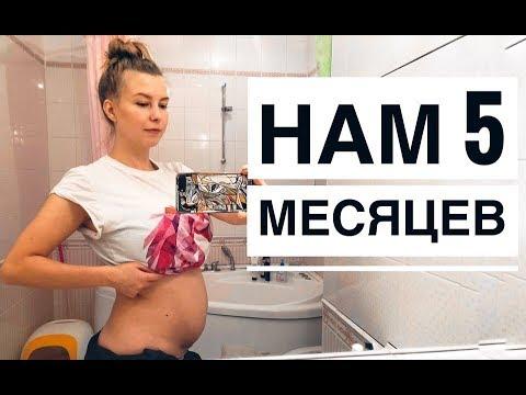 Как выглядит животик в 5 месяцев беременности