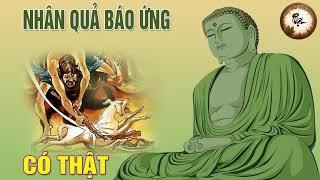 Nhân Quả Báo Ứng Có Thật - Kể Truyện Phật Giáo Nhân Quả Có Thật 100% | Phật Pháp Nhiệm Màu