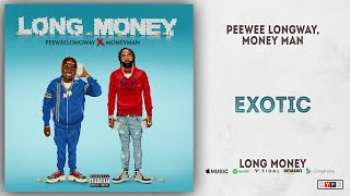 Gambar cover Money Man - Exotic (Long Money)