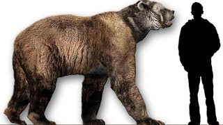 10 Unbelievable Animals that coexisted with humans | Prehistoric Beasts!