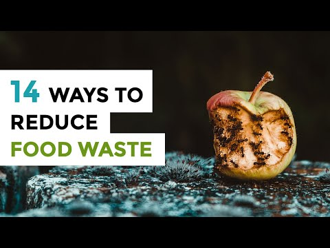 REDUCE FOOD WASTE | 14 Ways to Stop Wasting Food