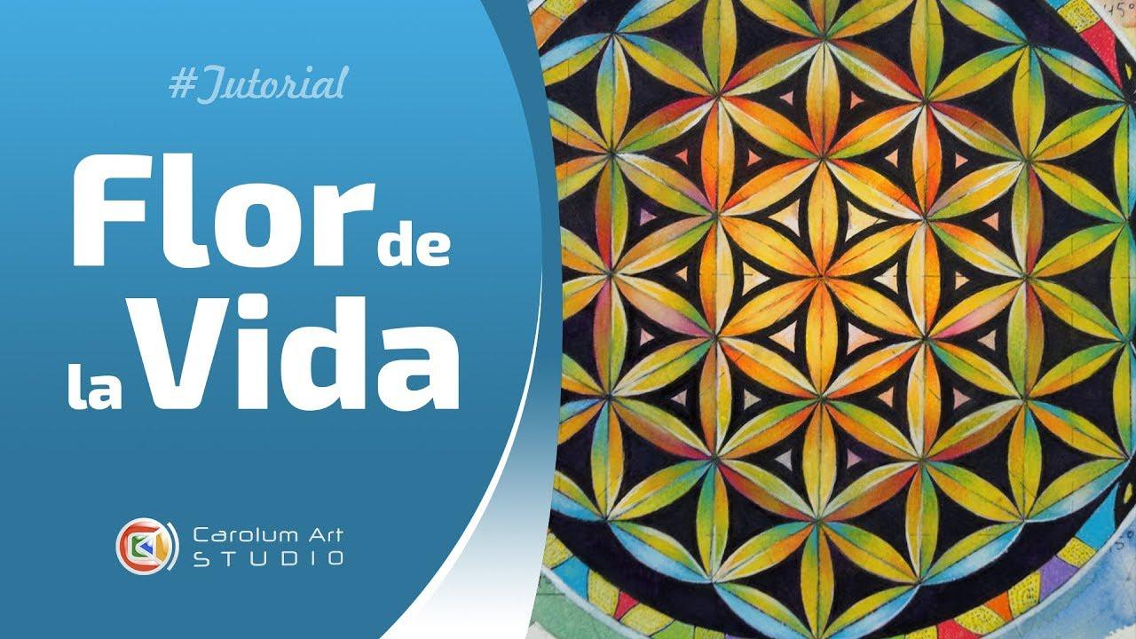 Flor De La Vida Dibujo Y Pintura Tutorial Carolum Art Youtube