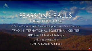 Pearson's Falls -
