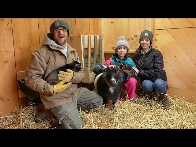 Day in the LIFE on a FARM with a FIRST Time GOAT MOM (Hope our Miniature Goat)