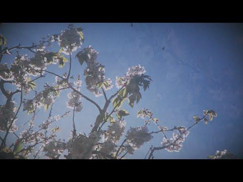 Season of Mist - YouTube (ft. Season of Mist)