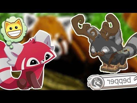 Animal Jam Update: CUTEST ANIMAL EVER!!!