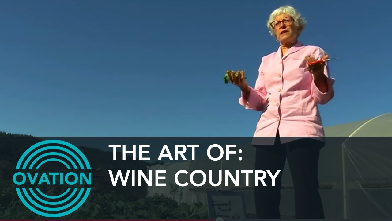 The Art Of: Wine Country - Cindy Pawlcyn - Ovation