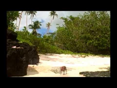 Puavasa (Samoan Songs 2013)