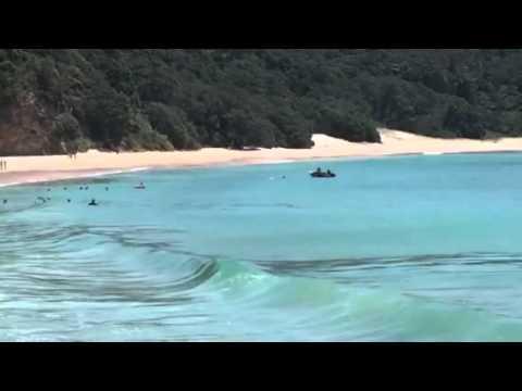 New chum beach coromandel