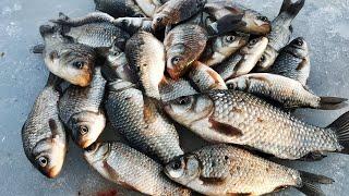 НАМОТАЛ МАНКУ НА МОРМЫШКУ И НАЧАЛОСЬ ЛОВЛЯ КАРАСЯ ЗИМОЙ Зимняя рыбалка 2021