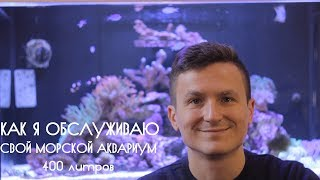 Как я обслуживаю свой морской аквариум.