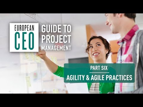 European CEO Guide to Project Management – Part Six – Agility & Agile Practices