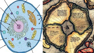 Mercator Maps & Ancient Cosmology Show That All Human DNA Can Be Traced Back To ONE SOURCE!!!