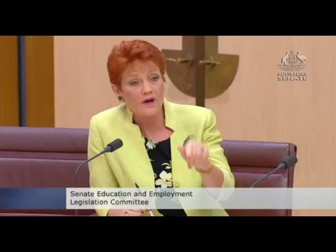 Pauline Hanson claims Michaelia Cash being interrogated by former union bosses