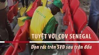 Tuyệt vời CĐV Senegal - Ở lại dọn rác SVĐ sau trận đấu - Tin Tức VTV24