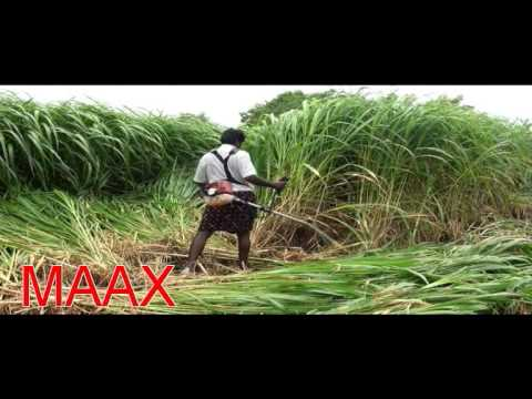 Maax Brush Weed Cutter Best In Class Youtube