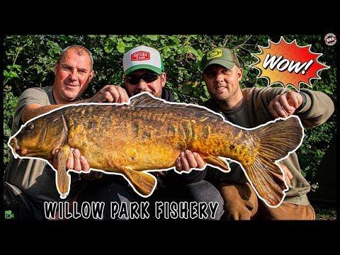 WILLOW PARK FISHERY **Carp Fishing**