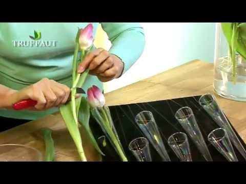 Art floral cr er un tableau avec des tulipes - Comment faire composition florale avec mousse ...