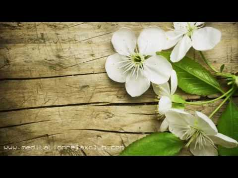 3 HOURS Calming Therapeutic Meditative Healing Music for Massage and Chakra Therapy