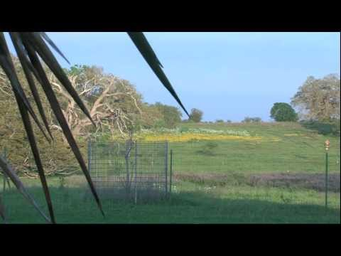 2012 Lone Star Land Steward: Wexford Ranches - Texas Parks And Wildlife [Official]
