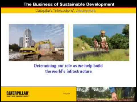 The Business of Sustainable Development