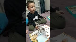 Мальчик которое знает все про животных