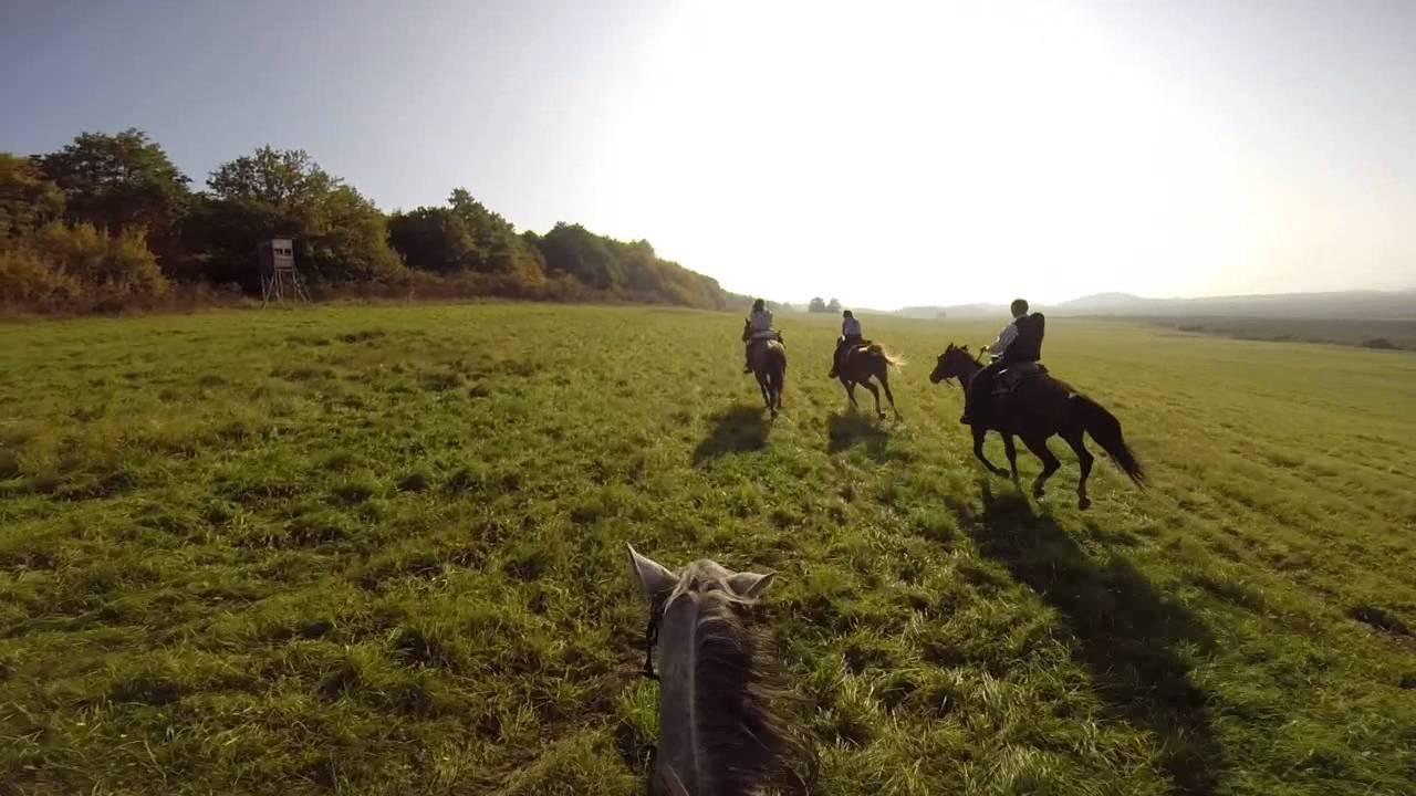 Amazing Horseback Riding With Friends, Beautiful Nature