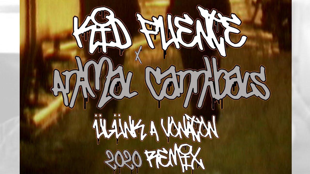 Kid Fuente X Animal Cannibals - Ülünk a vonaton 2020 remix