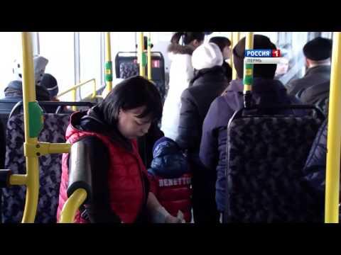 Пермские автобусы меняют график движения