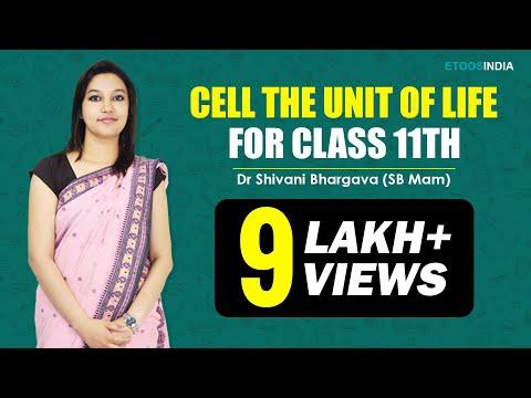 NEET I Biology I Cell The Unit Of Life I Shivani Bhargava(SB) Mam from ETOOSINDIA.COM