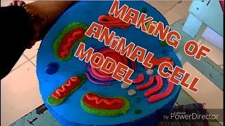 "TCCSTFI Science Project ""Making Animal Cell Model"" Section (9) STEM"