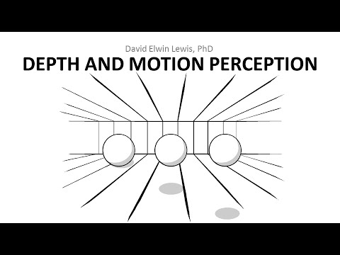 6.4 Depth and Motion Perception