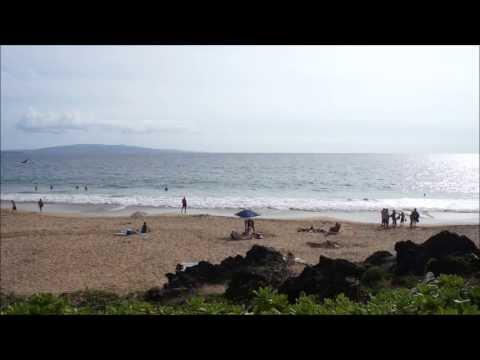 Maui's Best Webcam ~ Charley Young Beachcam ~ Hawaii Webcam