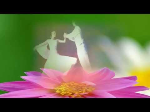 Маркин Владимир - Я готов целовать песокиз YouTube · Длительность: 2 мин31 с  · Просмотры: более 100.000 · отправлено: 8-9-2015 · кем отправлено: MASTER KARAOKE